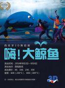 西班牙3D舞蹈剧《嗨!大鲸鱼》