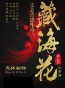 多媒体3D舞台剧《盗墓笔记外传:藏海花》