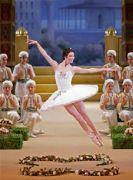 芭蕾荟萃:莫斯科大剧院芭蕾舞剧《海盗》
